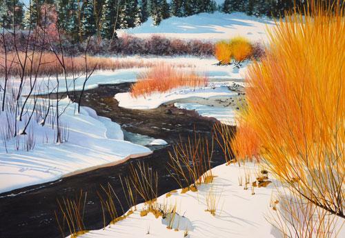 Bear Creek Beauty