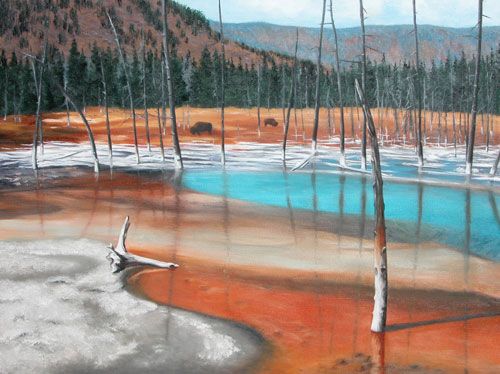 Yellowstone Life