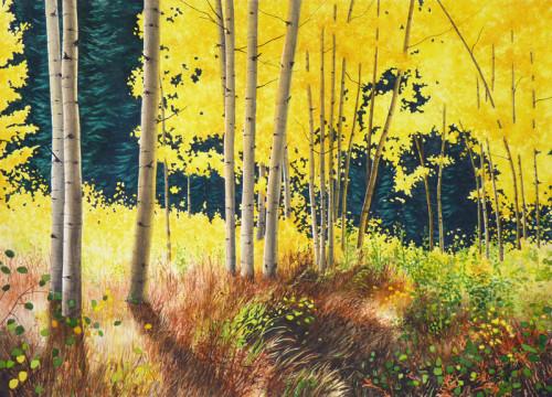 Season of Light - Nancy Wylie - Artist