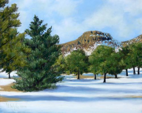 Winter West View - Nancy Wylie