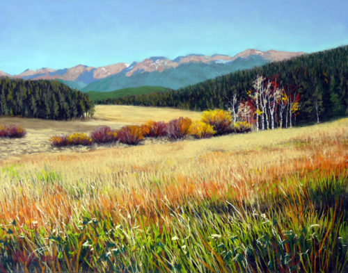 Nancy Wylie artist Mountain and Meadow pastel